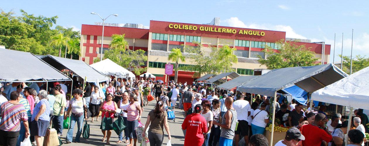 guillermo_angulo2b